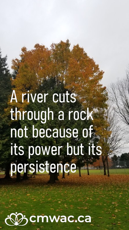 A river cuts through a rock not because of its power but its persistence